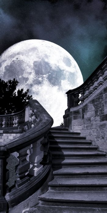 Сон в первый лунный день