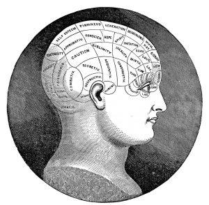 garmonizacija-mozga