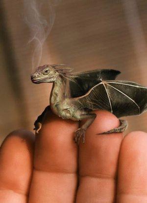 dobryj-drakon