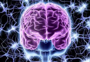 sostojanie-mozga